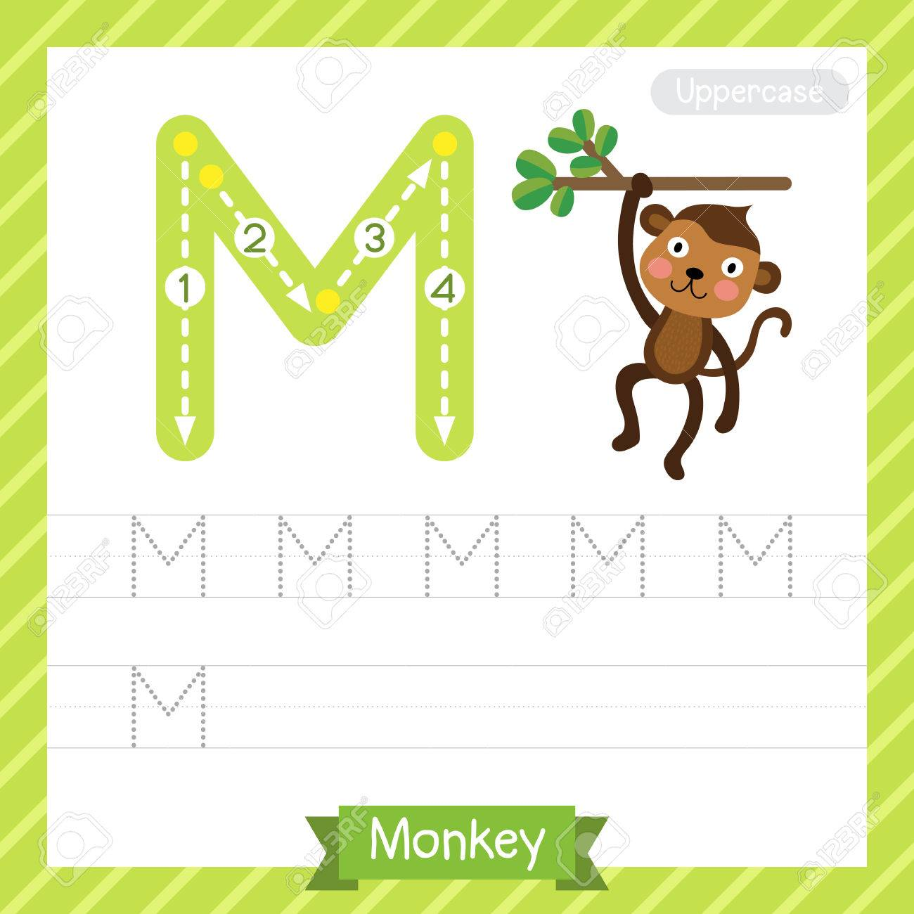 letter m uppercase tracing practice worksheet with monkey for