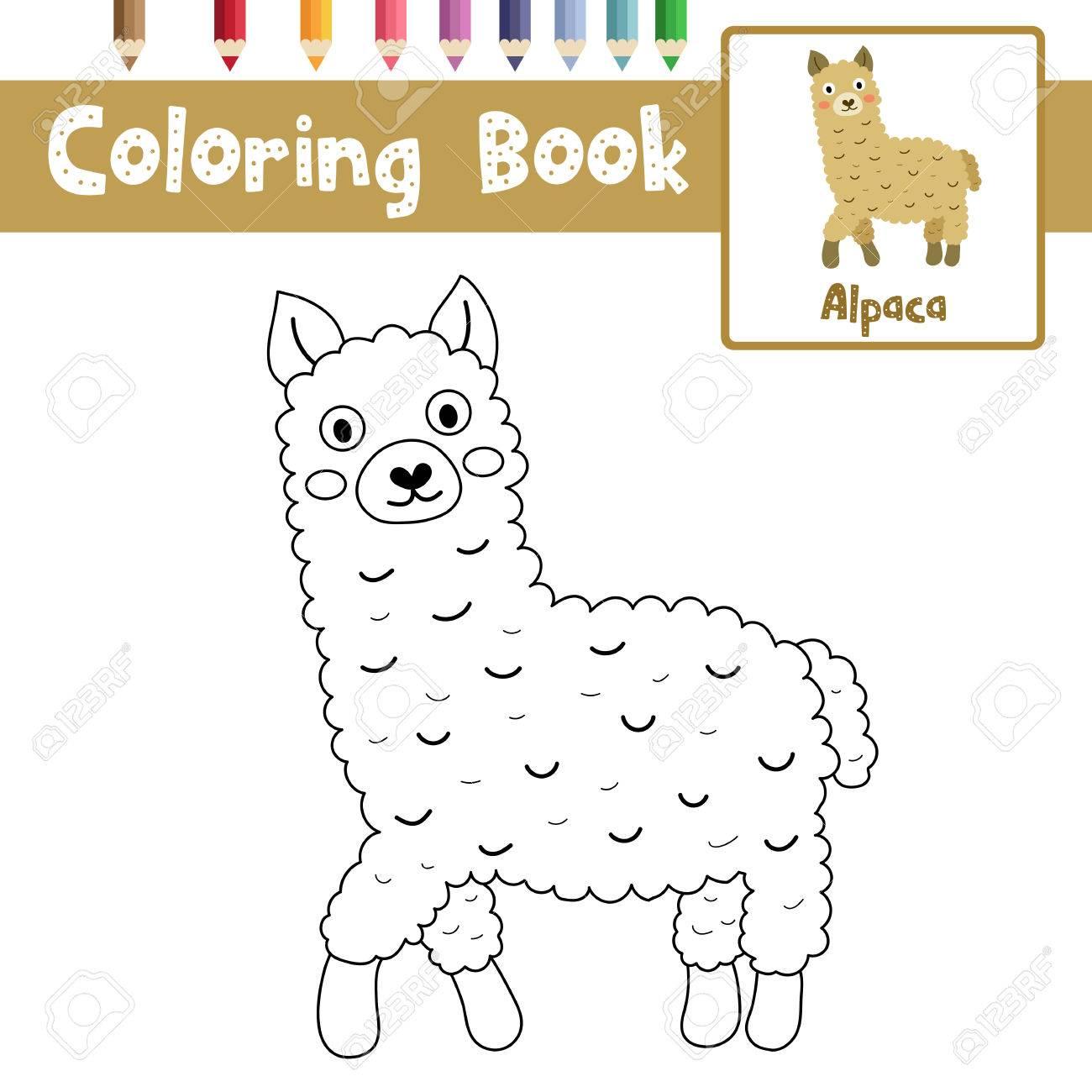 Dibujo Para Colorear De Animales De Alpaca Marrón Para Niños Preescolares Actividad Hoja De Trabajo Educativa Ilustración Vectorial