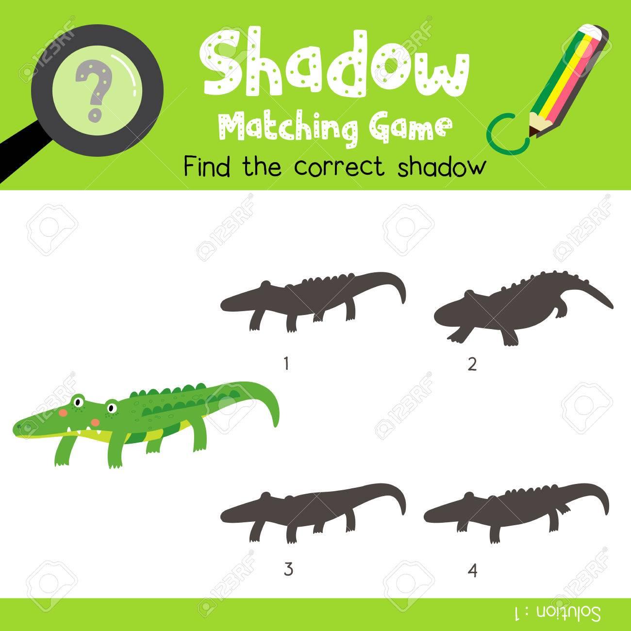 Schatten Matching Spiel Von Alligator Tiere Für Vorschule Kinder ...