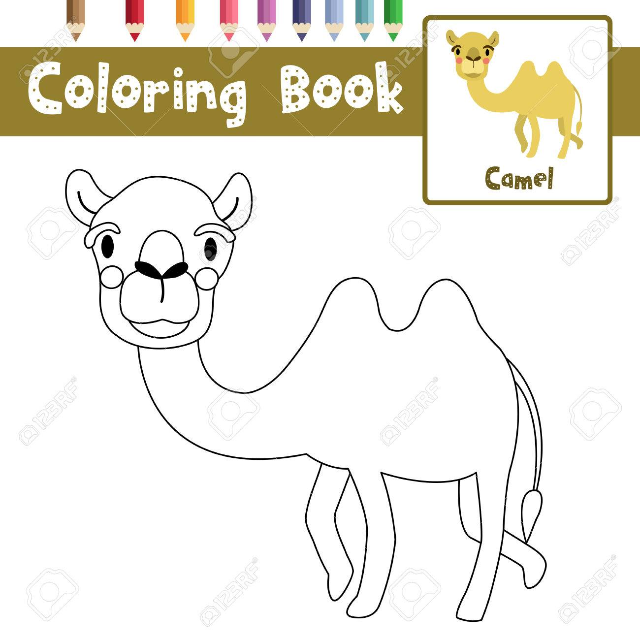 Coloring Page Of Bactrian Camel Animals For Preschool Kids Activity Educational Worksheet Vector Illustration