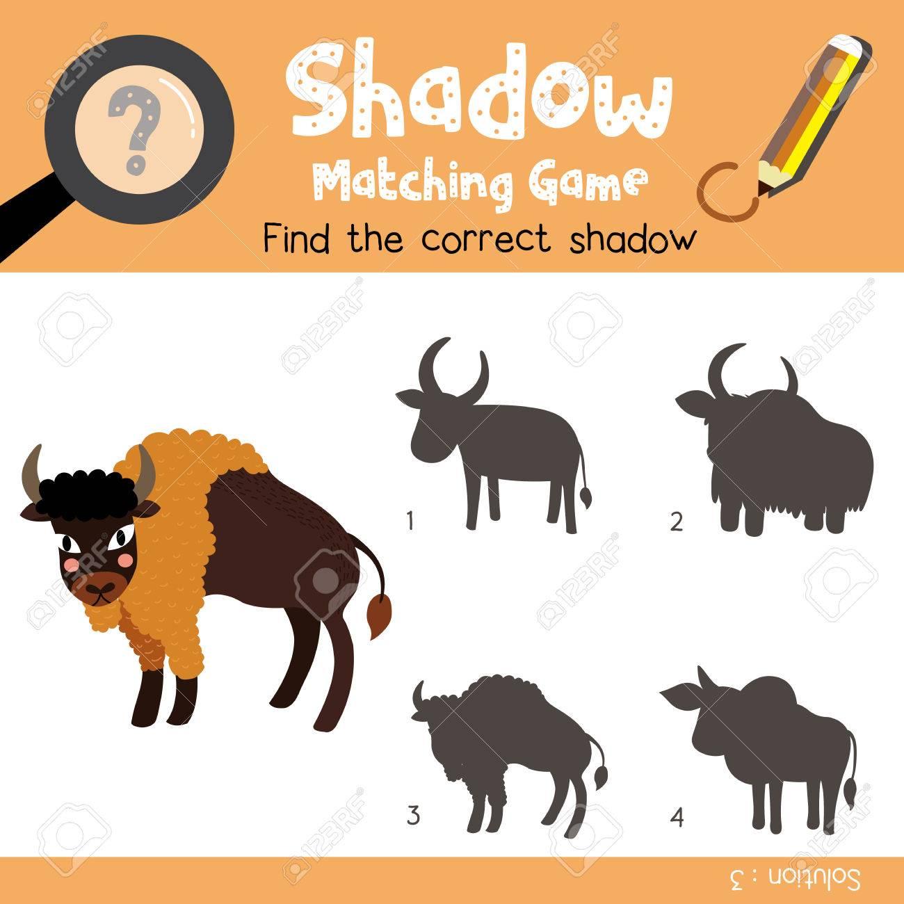 Schatten Matching Spiel Von Bison Tiere Für Vorschule Kinder ...