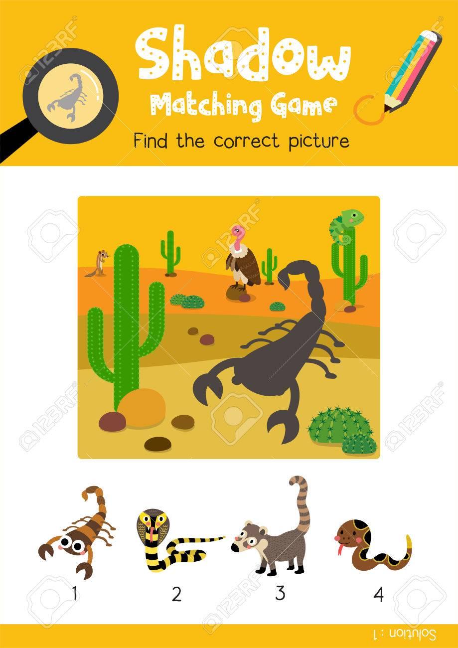 Schatten Matching Spiel, Indem Sie Das Richtige Bild Von Scorpion ...