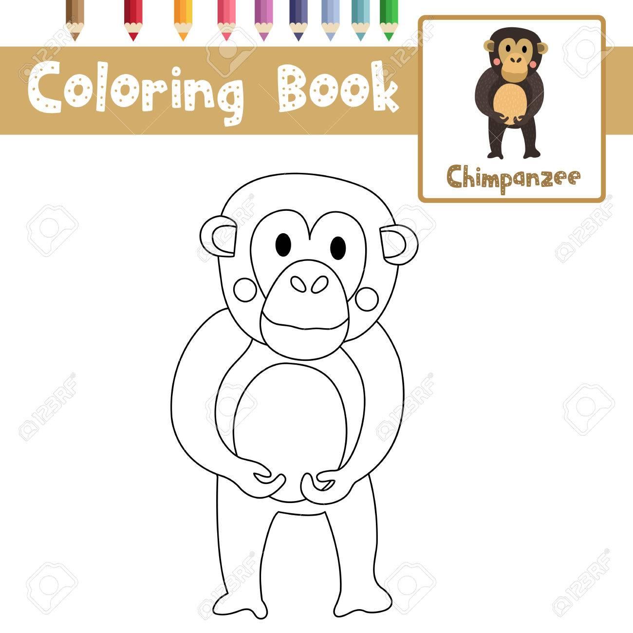 Dibujo Para Colorear Animales De Chimpancé Para Niños Preescolares ...