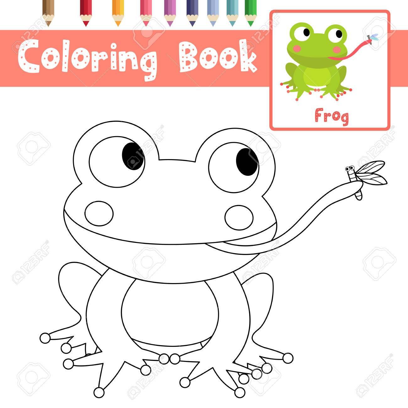 Dibujo Para Colorear Rana Comiendo Mosca De Animales Para Preescolar