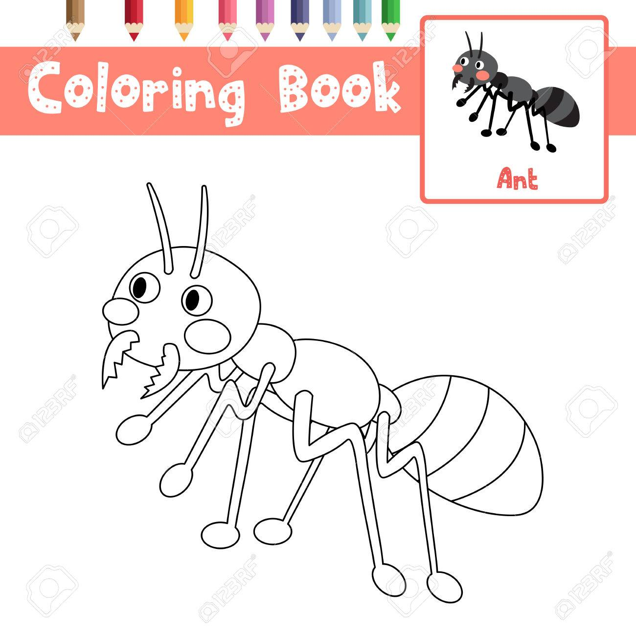 Coloring Page Of Black Ants Animals For Preschool Kids Activity ...