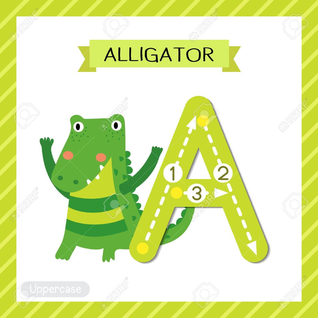 文字の大文字のかわいい子供たちカラフルな動物園と動物 Abc