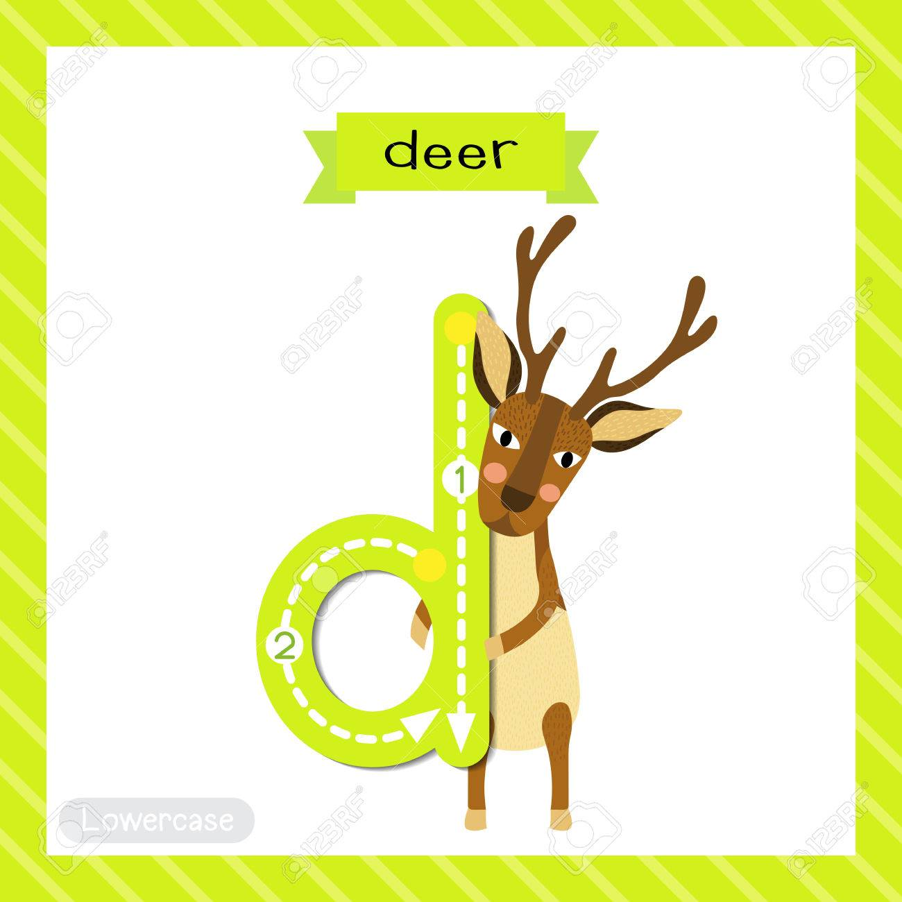 Letter D Lowercase Cute Children Colorful Zoo And Animals Abc