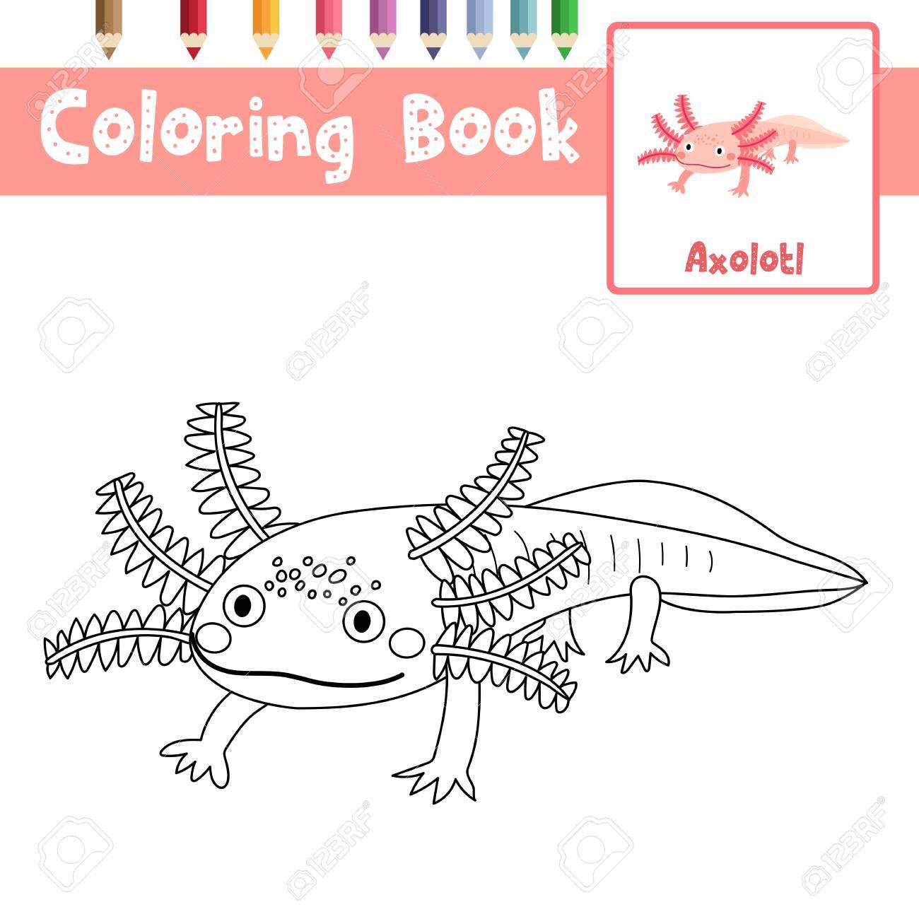 Malvorlagen Von Axolotl Mexikanischen Salamander Tiere Für ...