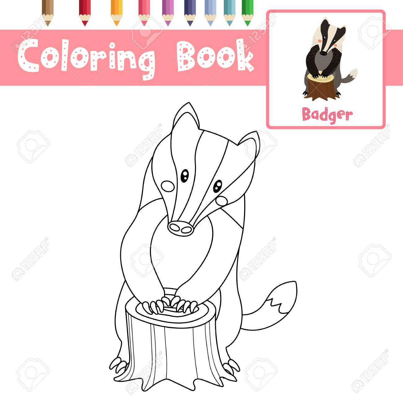 Coloring Page Of Badger Animals For Preschool Kids Activity Educational  Worksheet. Vector Illustration. Stock