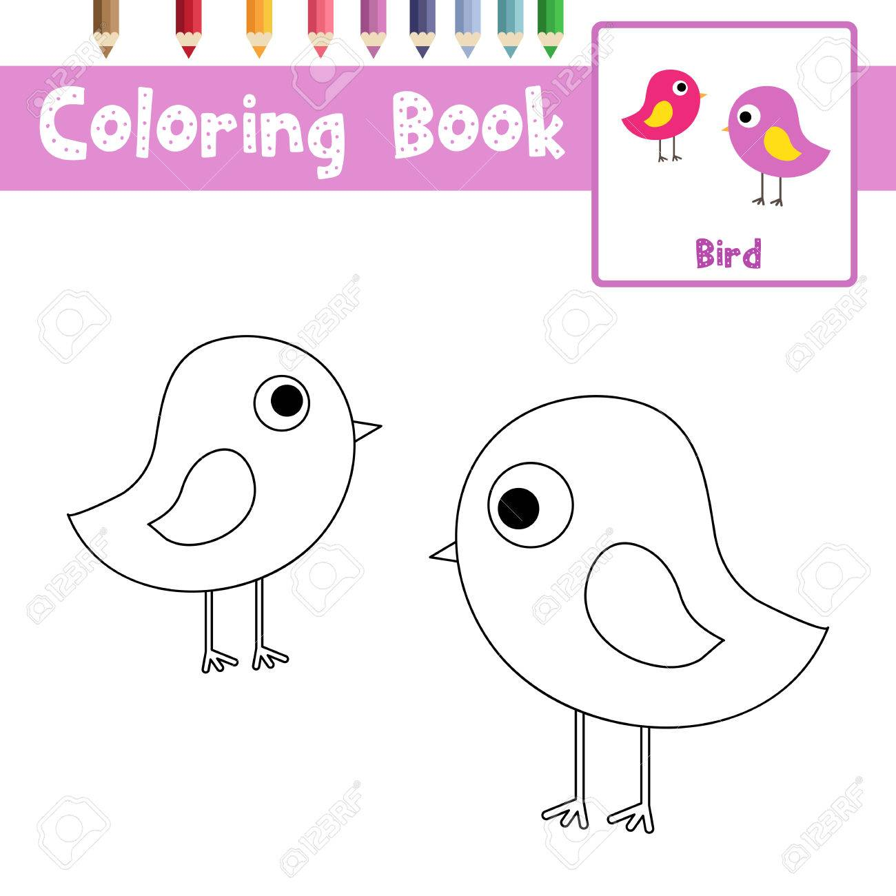 Coloring Page Of Standing Bird Animals For Preschool Kids Activity  Educational Worksheet. Vector Illustration.
