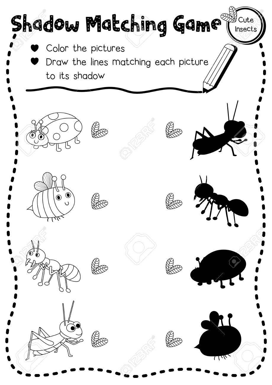 worksheet Bug Worksheets For Kindergarten shadow matching game of insect bug animals for preschool kids activity worksheet layout in a4 coloring