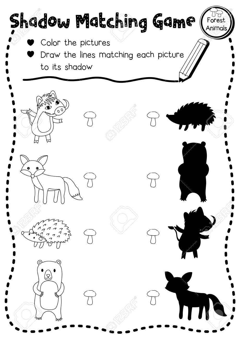 shadow matching game of forest animals for preschool kids activity worksheet layout in a4 coloring printable - Kids Activity Worksheet