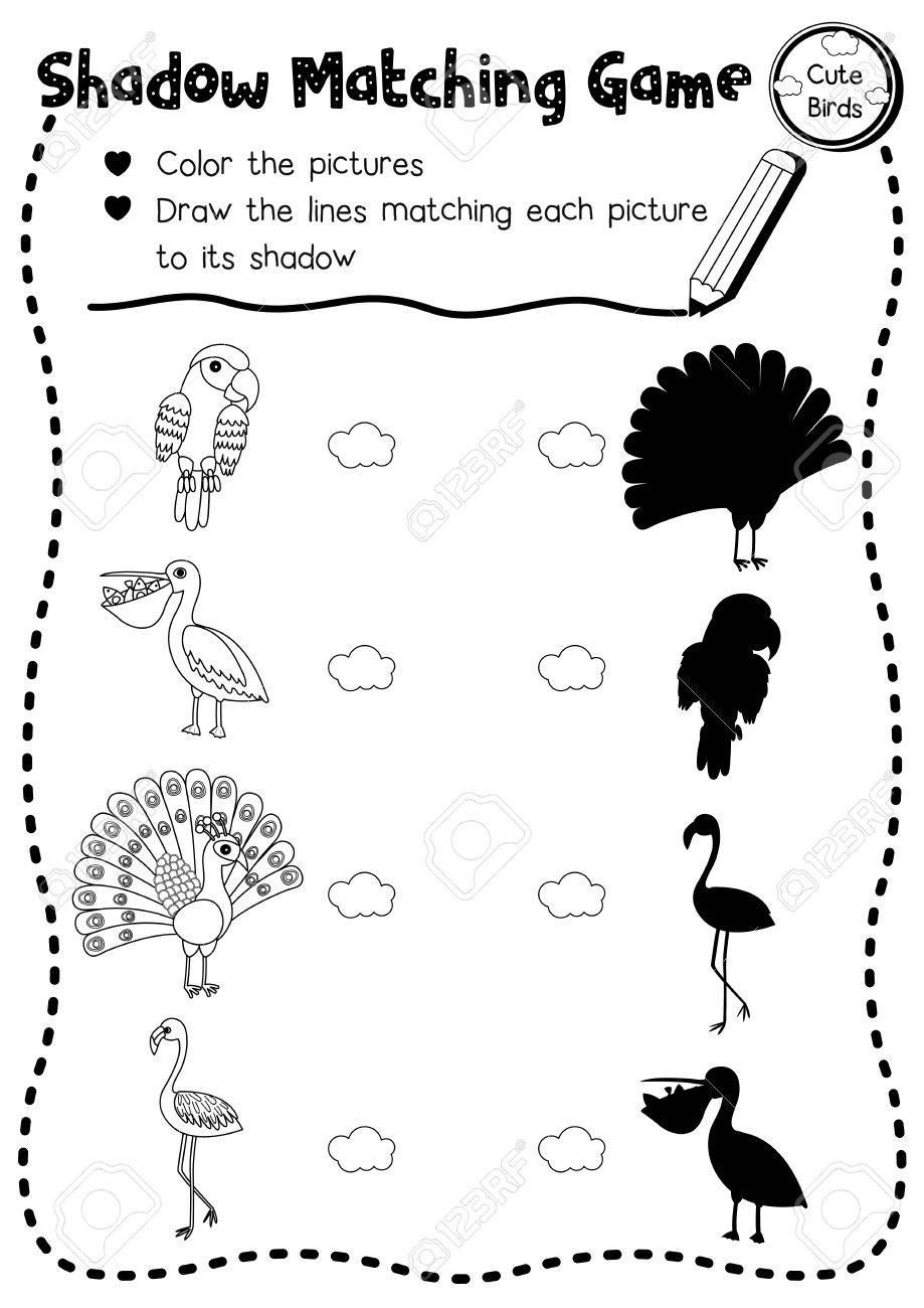 photograph relating to Animal Matching Game Printable known as Shadow matching sport of lovable hen pets for preschool youngsters..