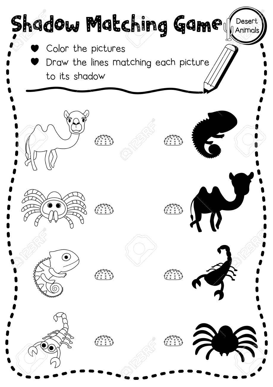 Juego De Emparejamiento De Sombras De Animales Del Desierto Para Niños De Edad Preescolar Hoja De Cálculo De Actividad En A4 Para Colorear