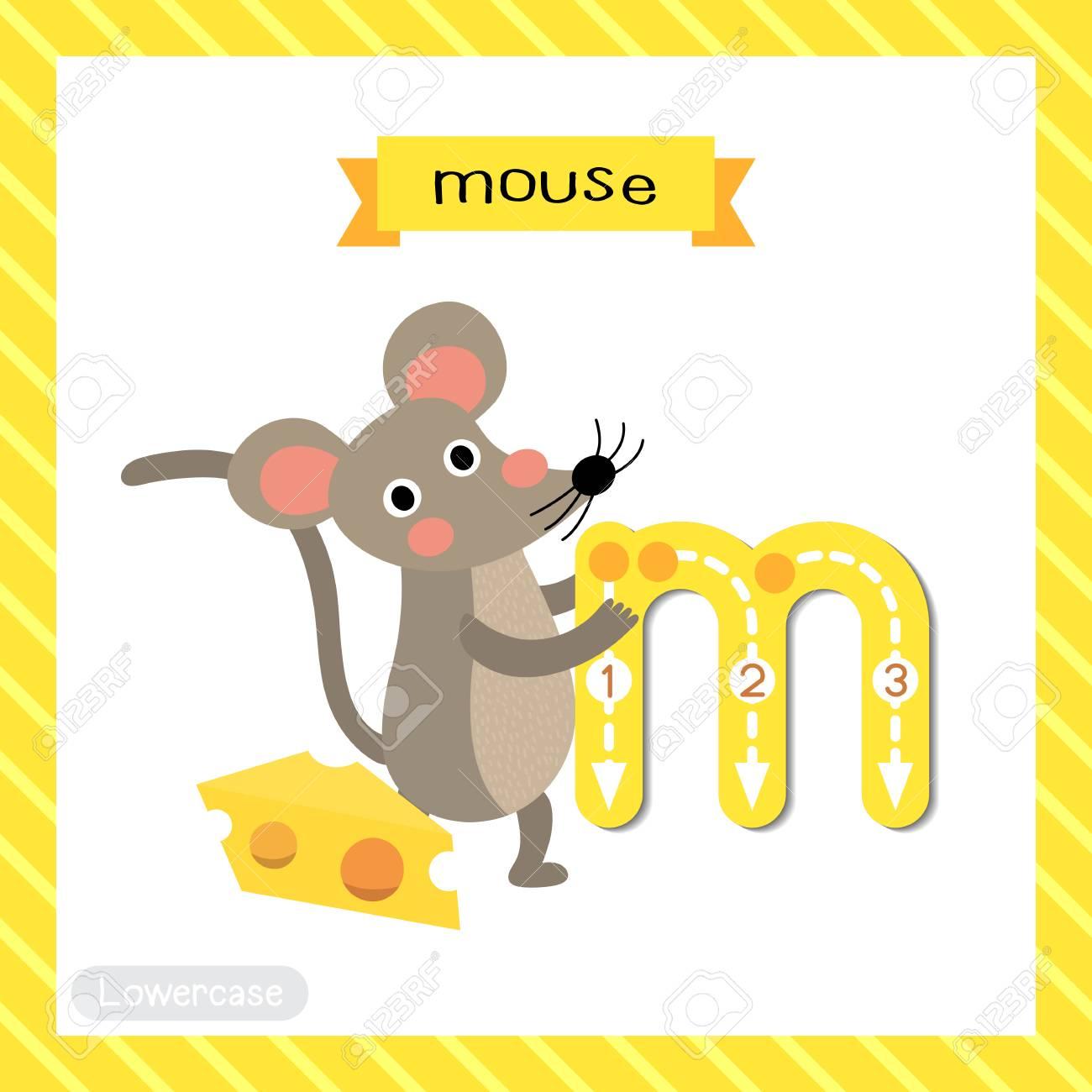 文字 M 小文字かわいい子供たちカラフルな動物園と動物 Abc