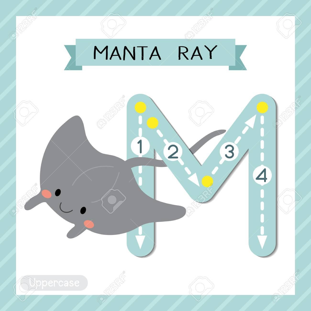 手紙 m 大文字のかわいい子供たちのカラフルな動物園と動物 abc