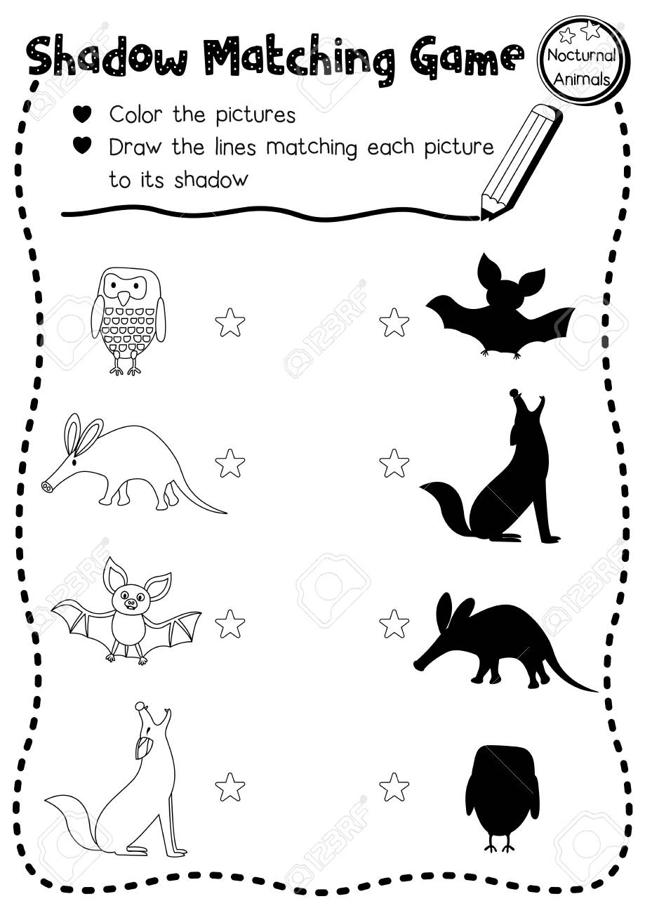 Image of: Activities Shadow Matching Game Of Nocturnal Animals For Preschool Kids Activity Worksheet Layout In A4 Coloring Printable 123rfcom Shadow Matching Game Of Nocturnal Animals For Preschool Kids