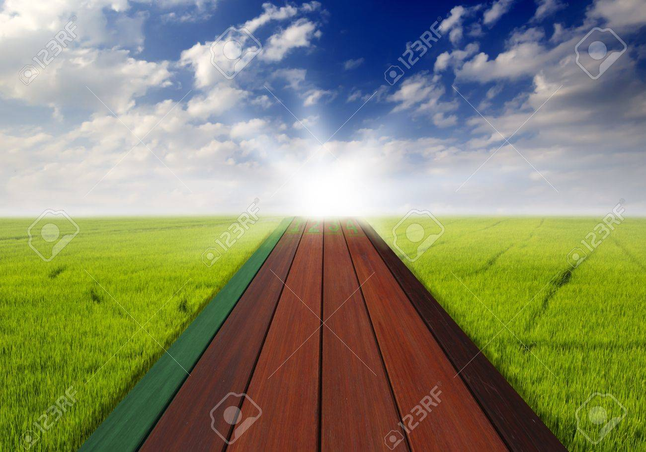 Wood Path on Rice field with cloudy landscape background Stock Photo - 15086803