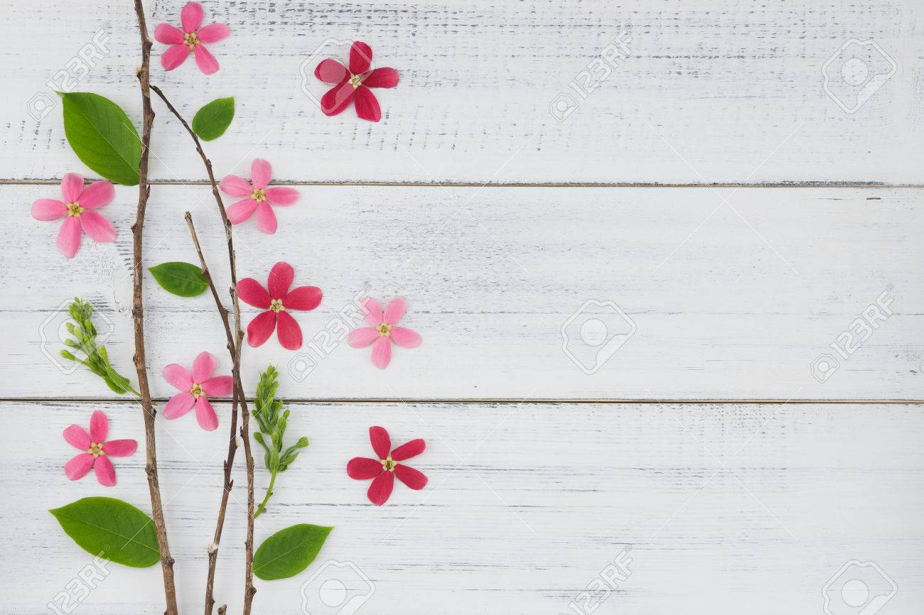 Pink And Red Flowers With Branch And Green Leaves On White Wood