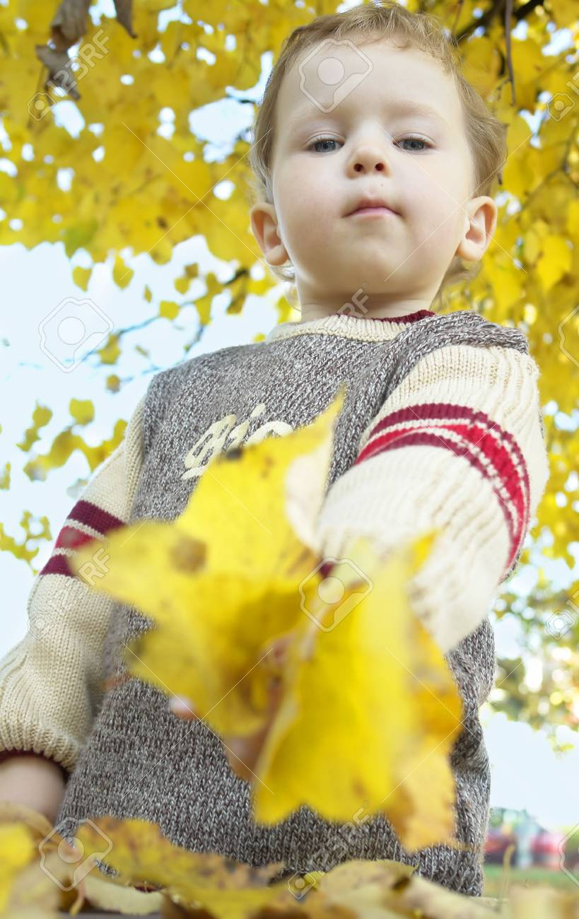 little boy showing yellow autumn leaves Stock Photo - 1815485