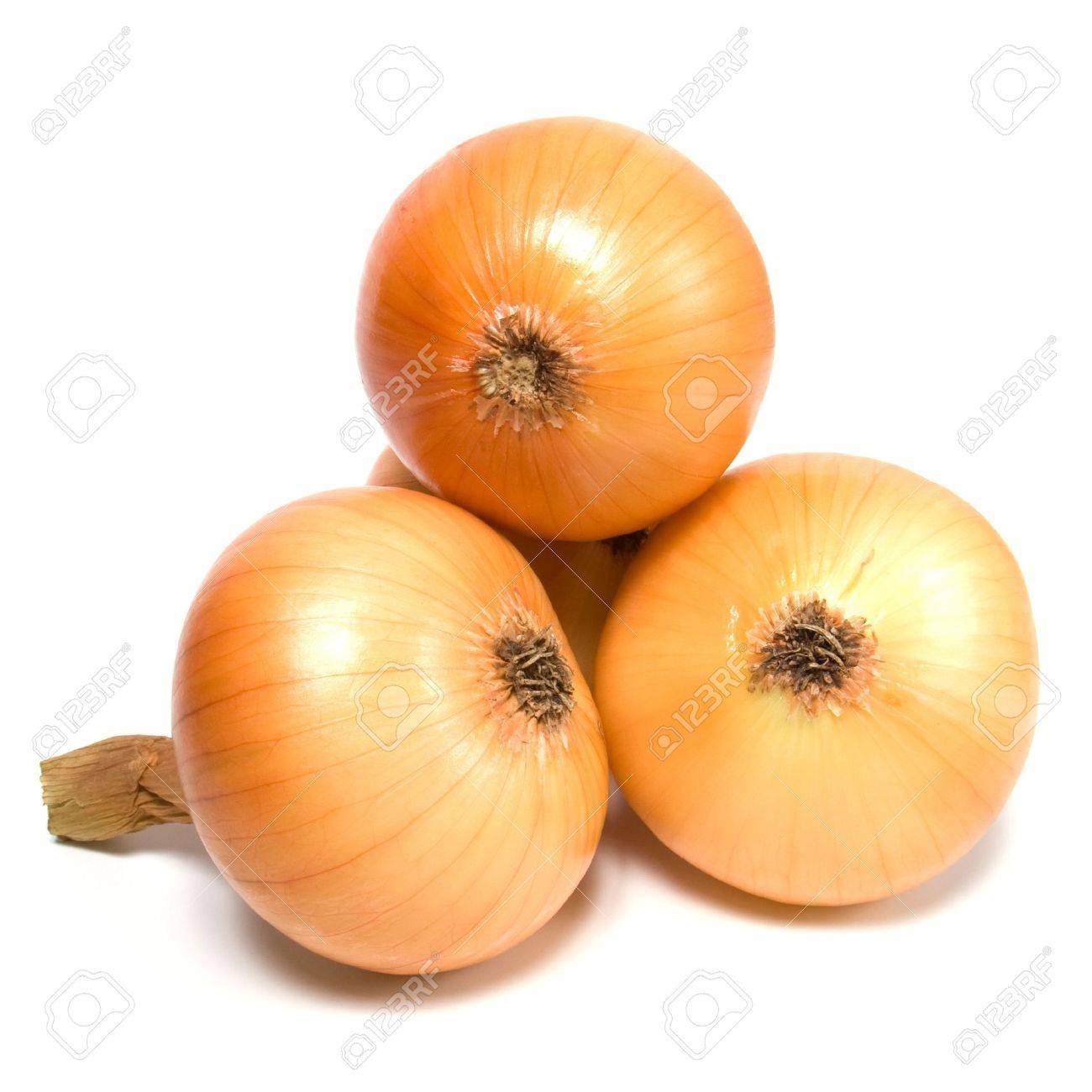 onion isolated on white background Stock Photo - 5982588