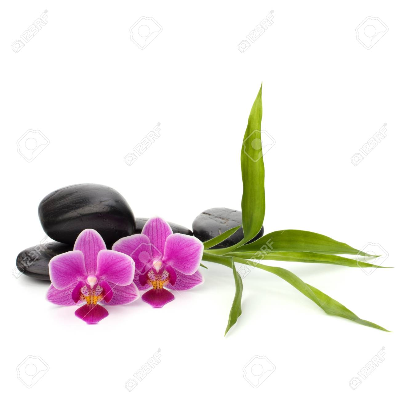 Zen pebbles balance. Spa and healthcare concept. Stock Photo - 13191288
