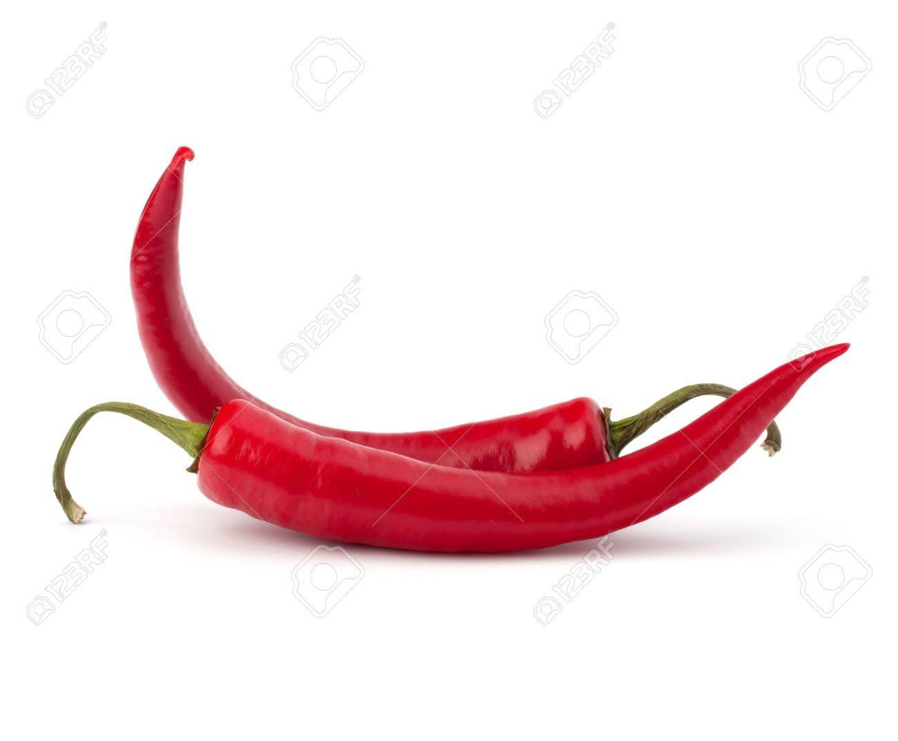Chili Bilder chili pfeffer isoliert auf weißem hintergrund lizenzfreie fotos