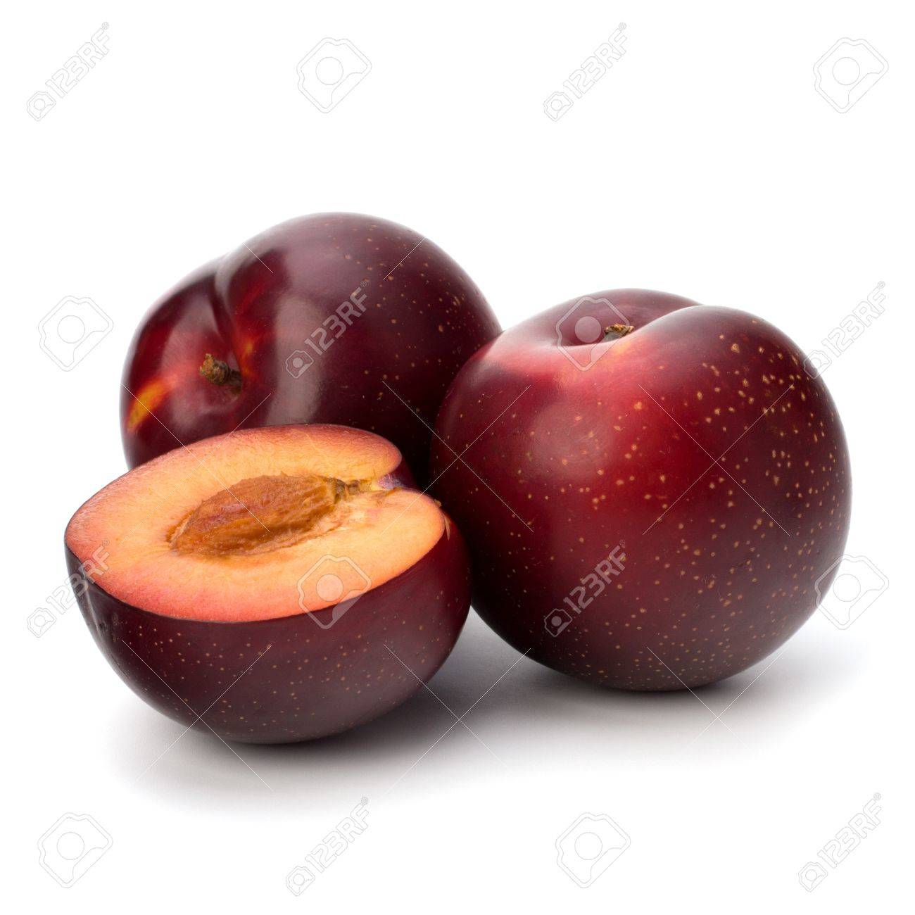 Red plum fruit isolated on white background Stock Photo - 13336130