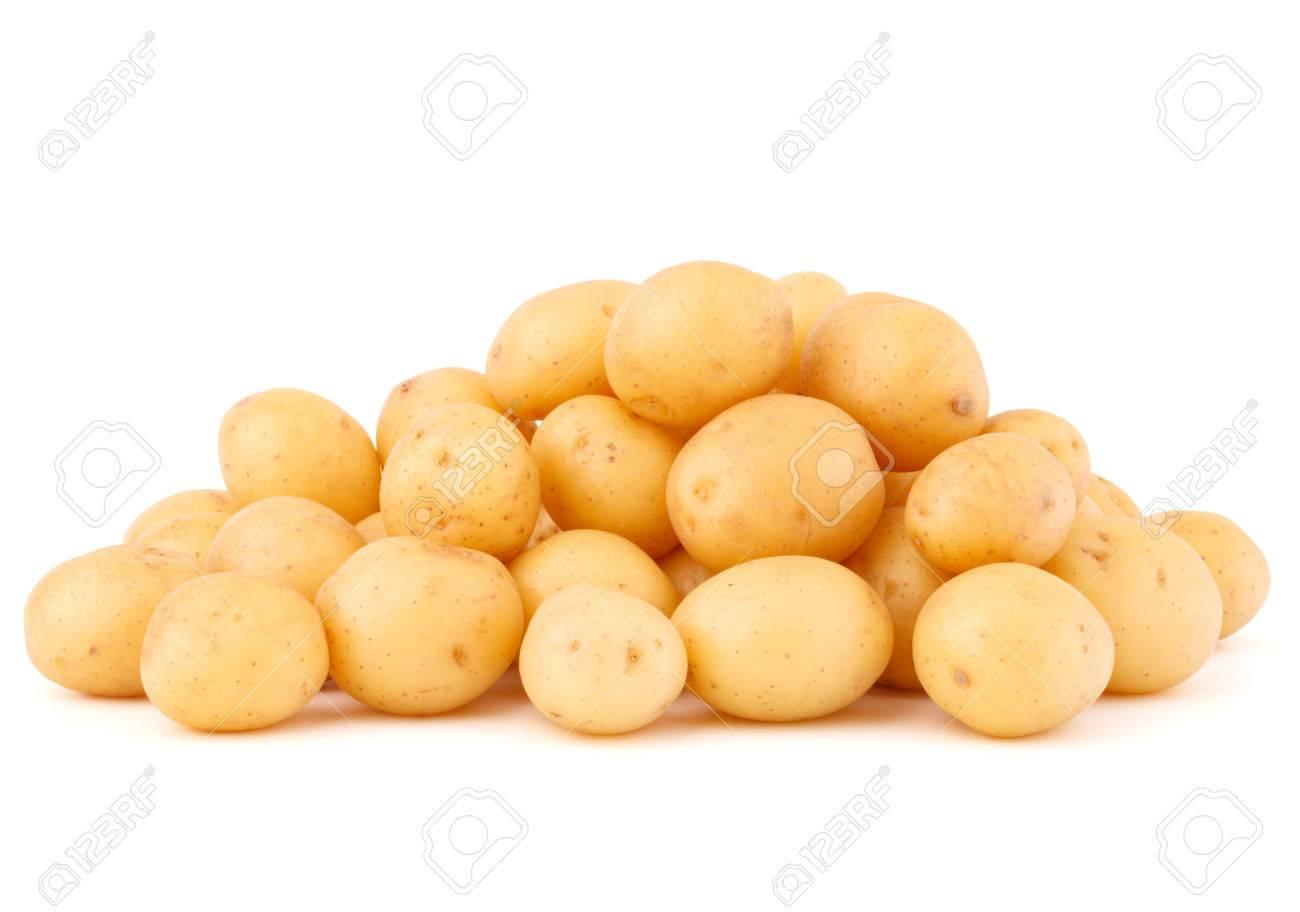 new potato tuber isolated on white background cutout - 36001200