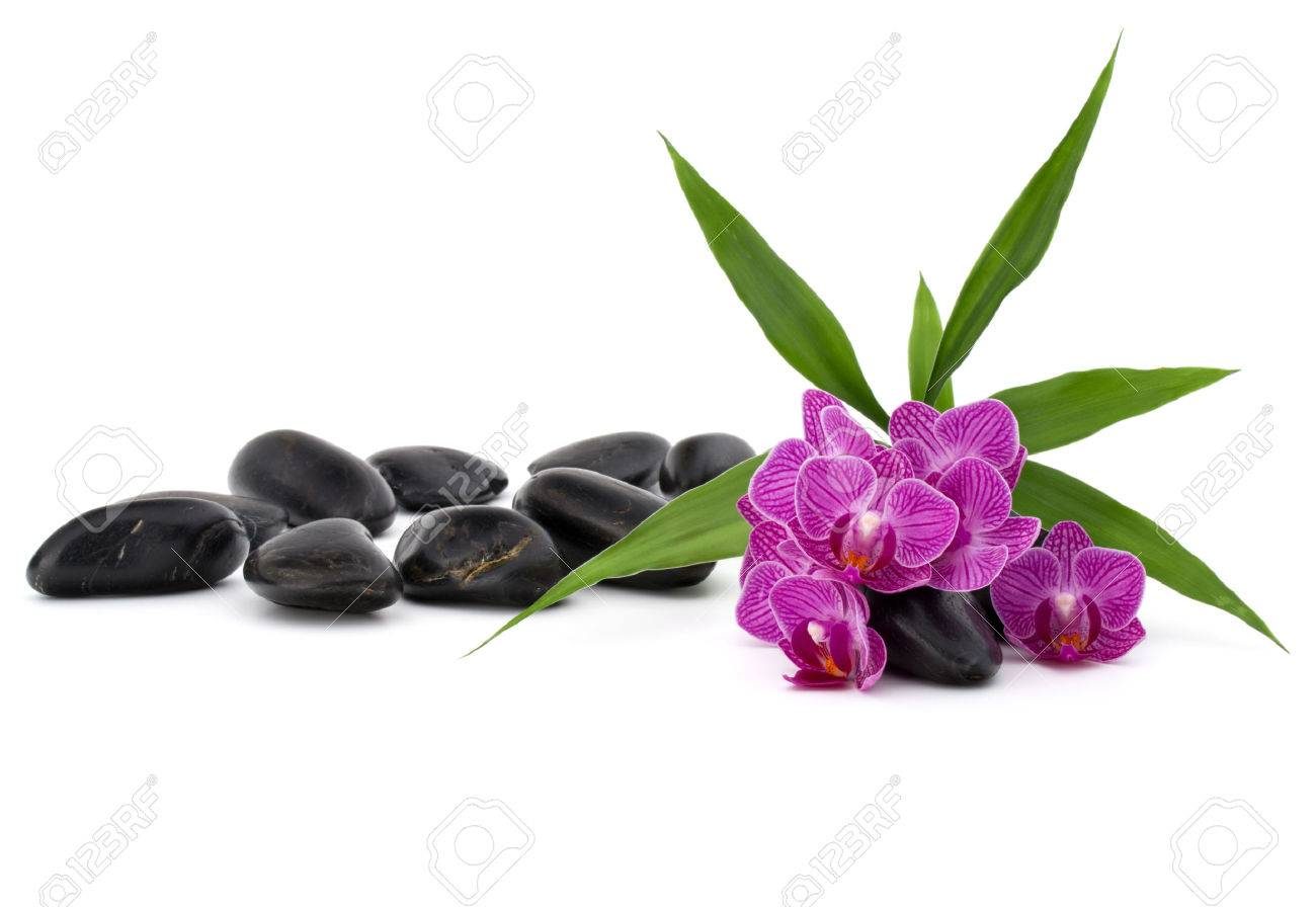 Zen pebbles and orchid flower. Stone spa and healthcare concept. - 47792659