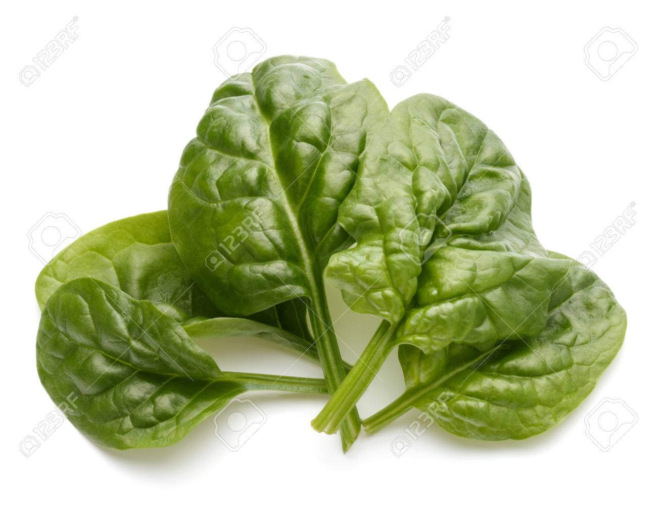 Baby spinach leaves isolated on white background cutout - 52252328