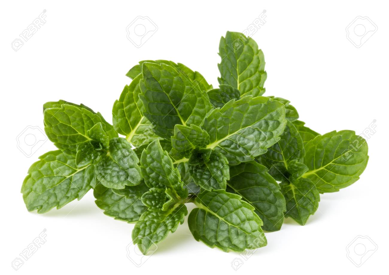 Fresh mint herb leaves isolated on white background cutout - 88715571