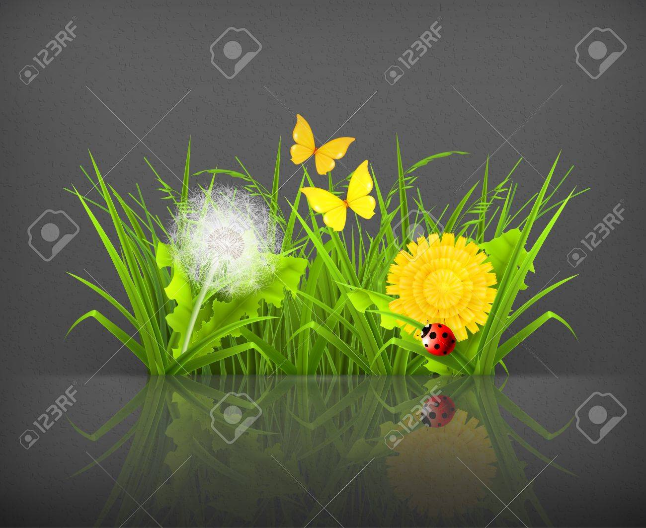 Summer grass Stock Vector - 19621679