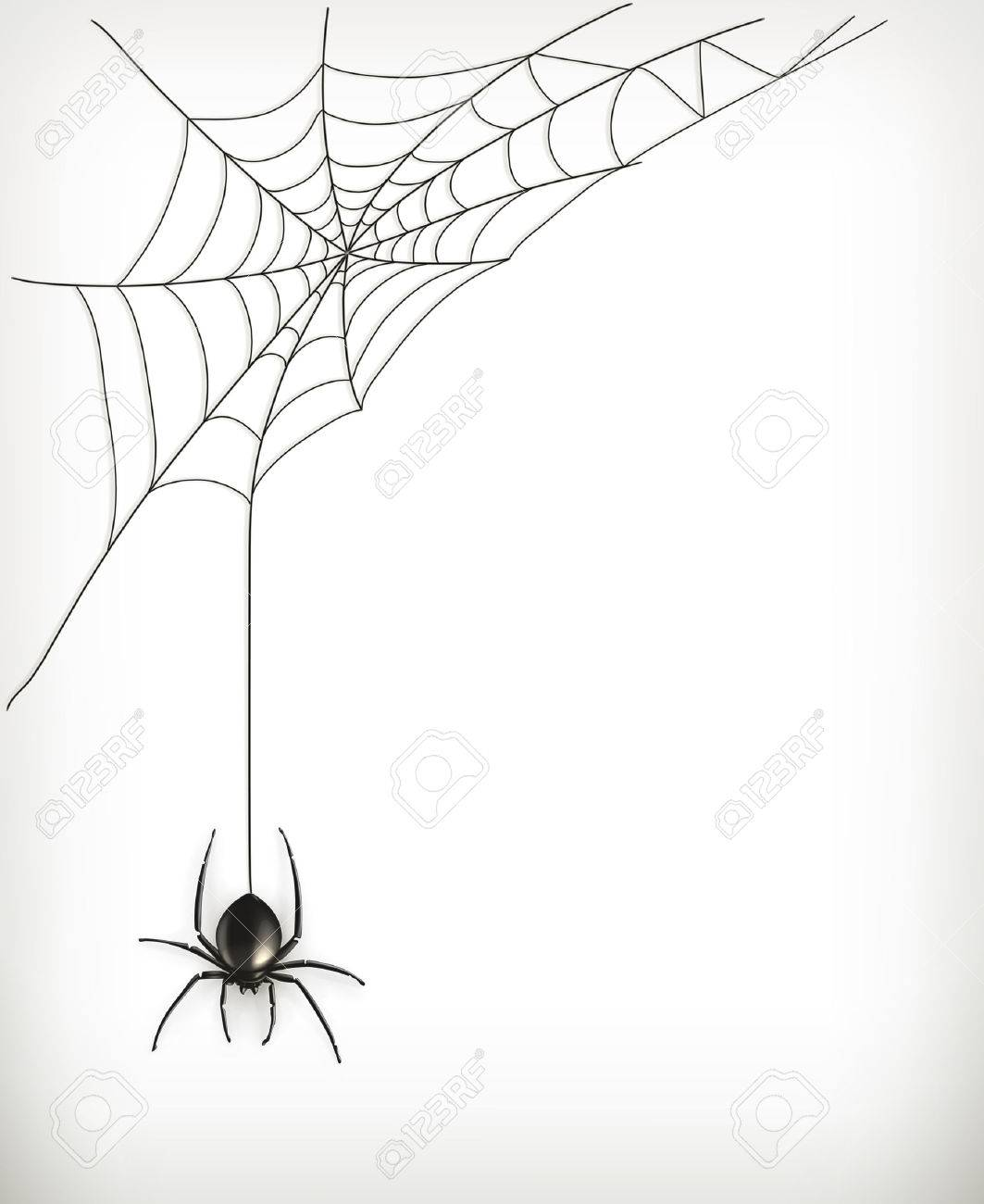 Spider web vector - 31975072