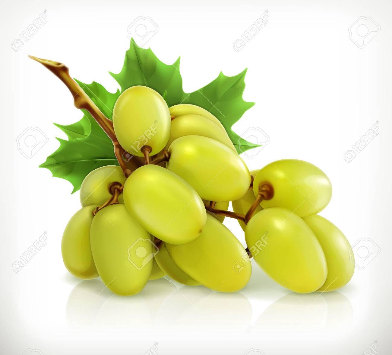 Bunch of grapes, vector icon Stock Vector - 40727183