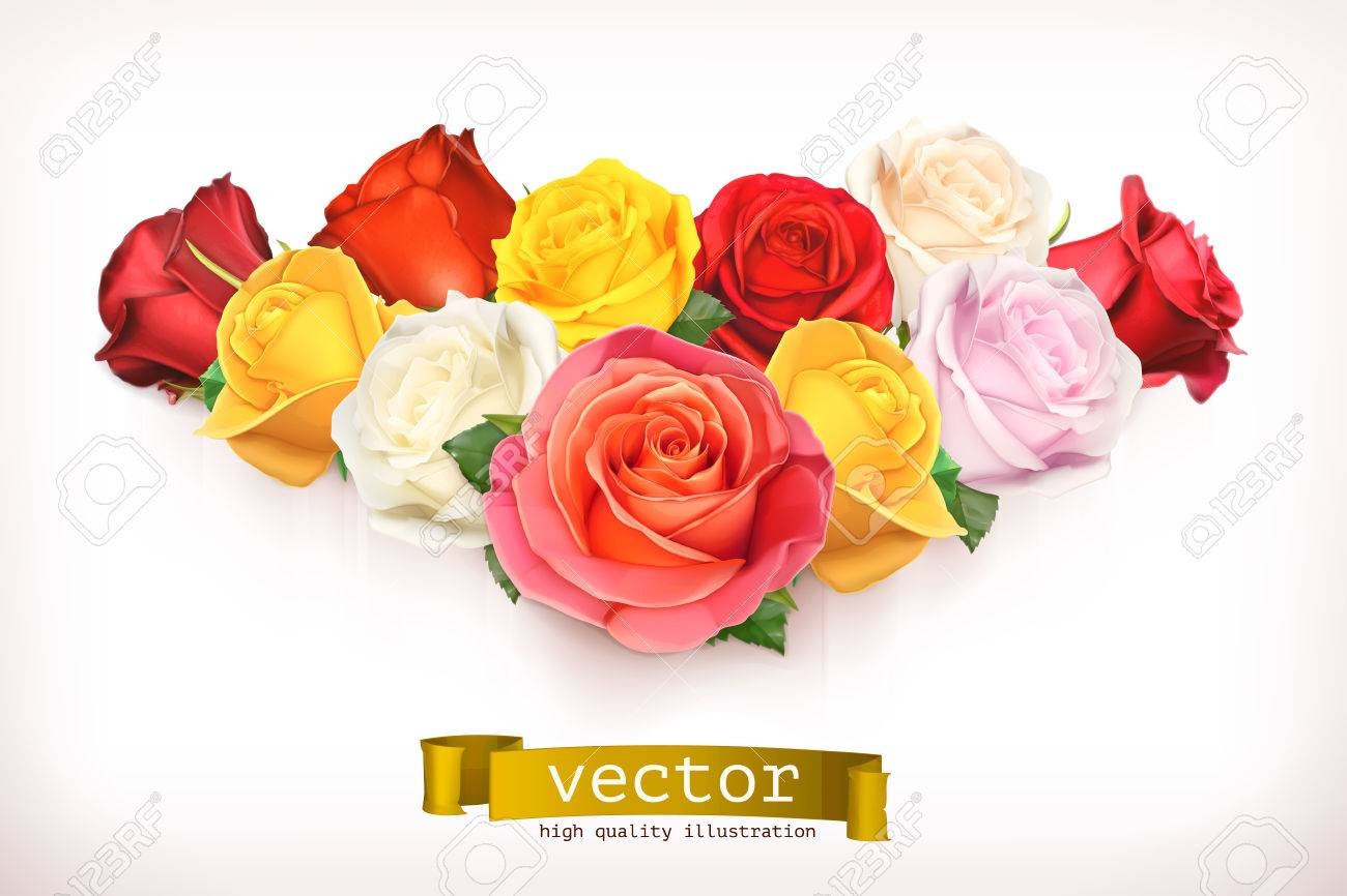 Bouquet of roses, vector illustration isolated on white Stock Vector - 43946611