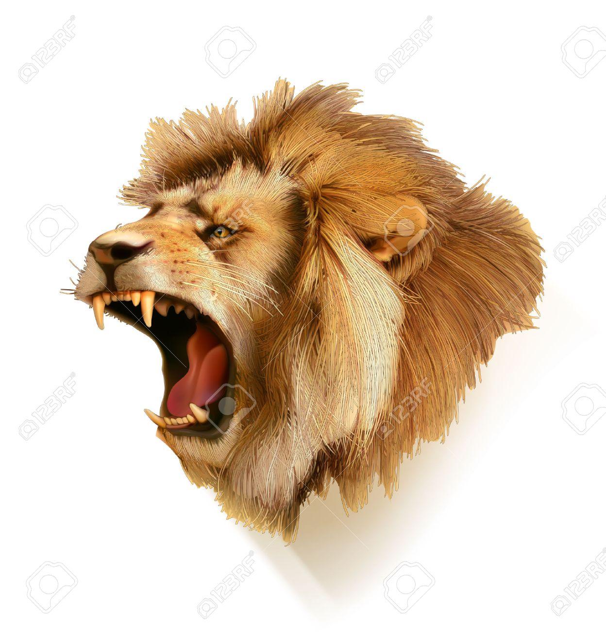 Roaring lion, head vector illustration Stock Vector - 44550279