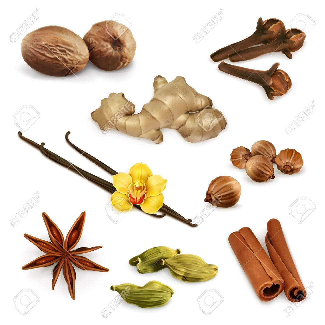 Set with spices, vector icons, isolated on white background Stock Vector - 46644472