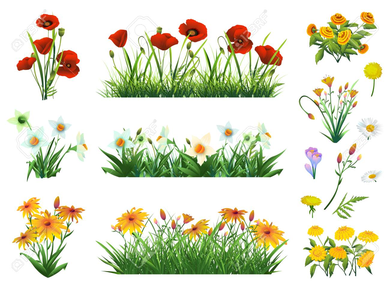 Flowers and grass set of vector elements. Nature and ecology - 55856651
