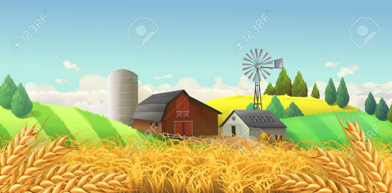 Wheat field. Farm landscape. Vector background - 68115968