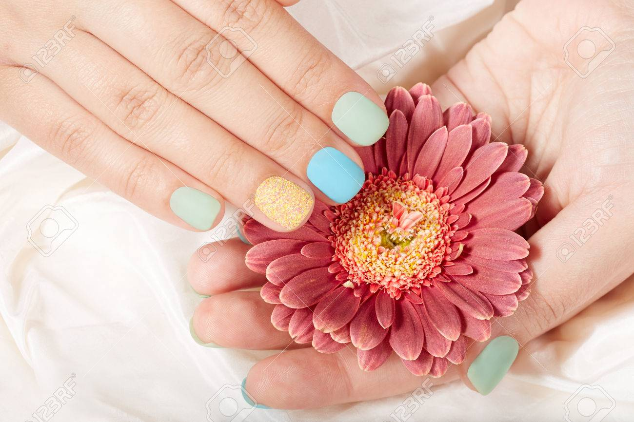 Hands With Short Matte Manicured Nails And Pink Gerbera Flower Stock ...