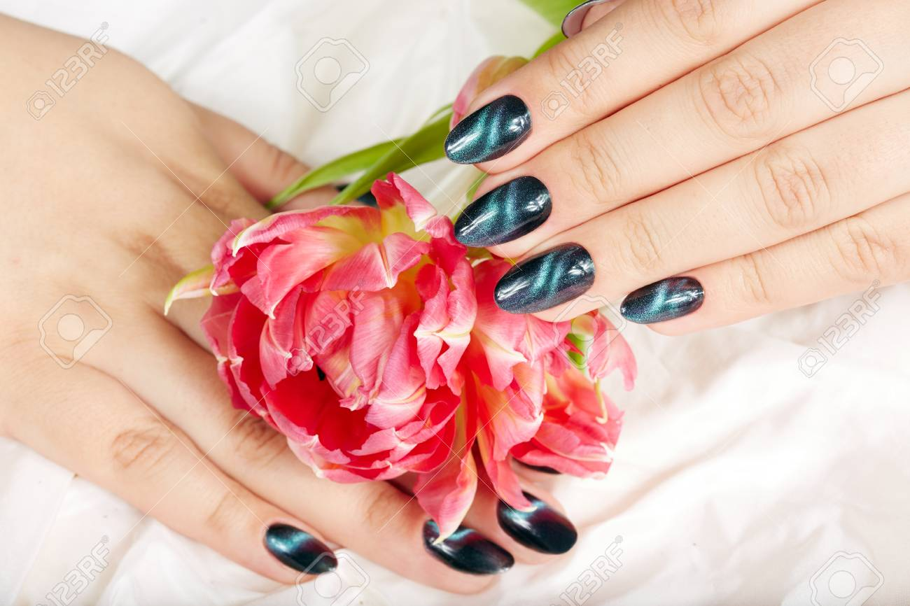 Hands With Manicured Nails With Cat Eye Design And Pink Tulip ...