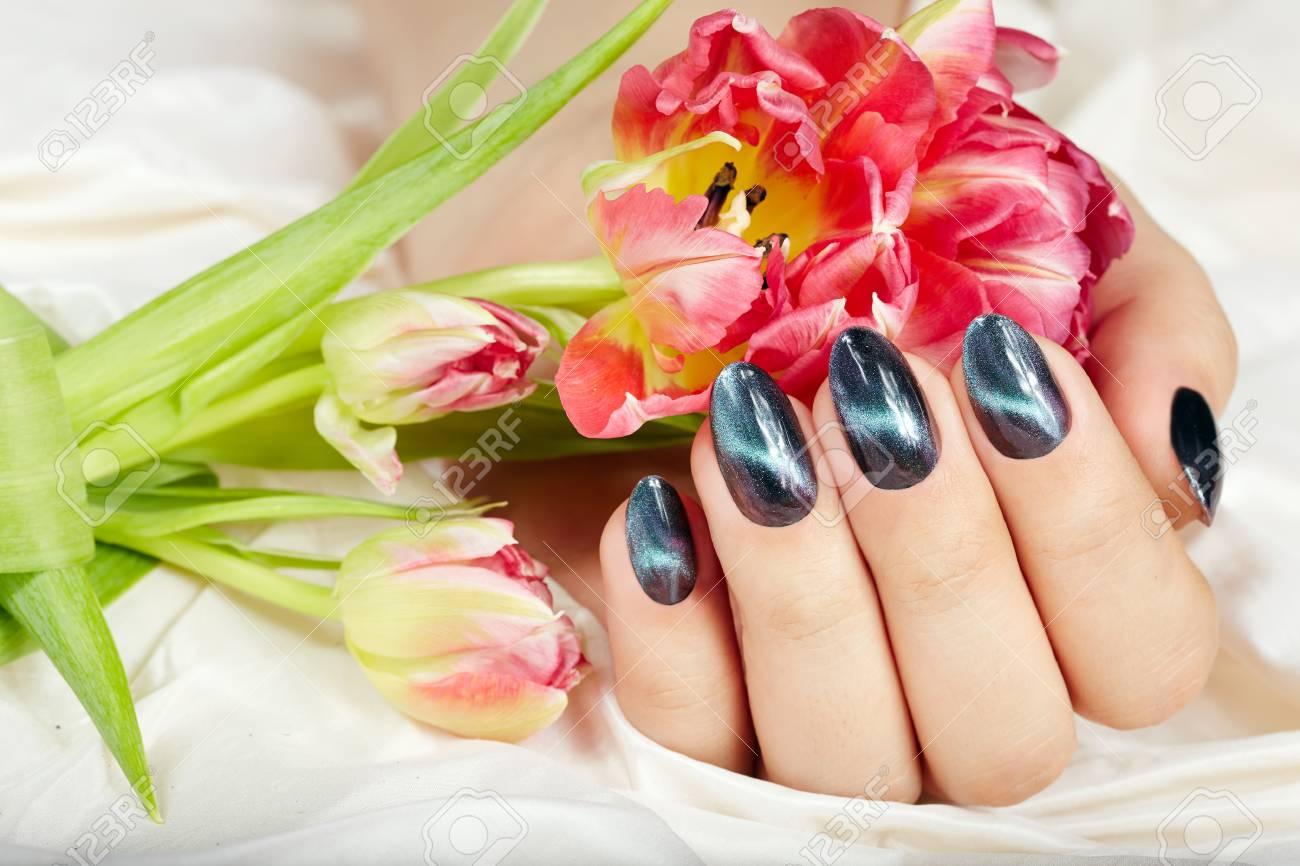 Hand With Manicured Nails With Cat Eye Design Holding Pink Tulip ...
