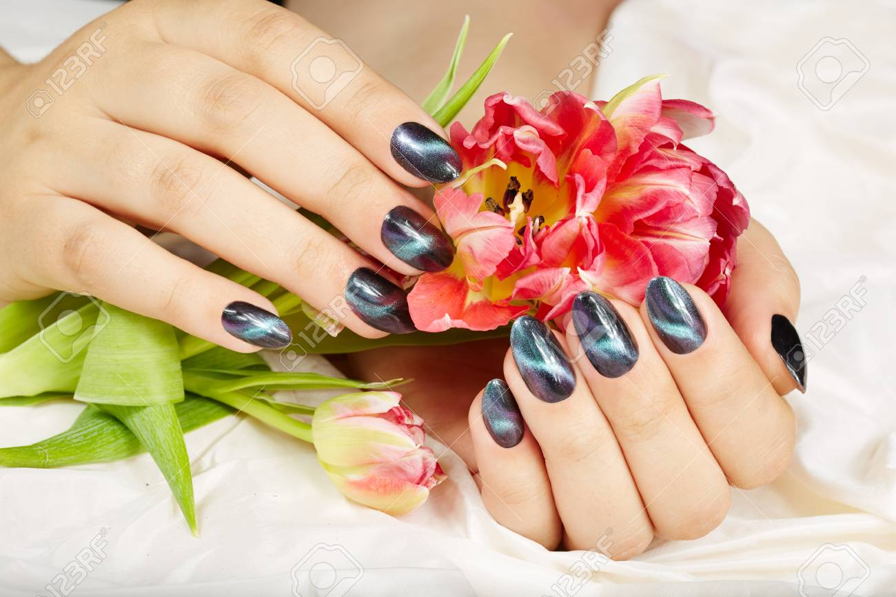 Hands With Manicured Nails With Cat Eye Design Holding Pink Tulip ...