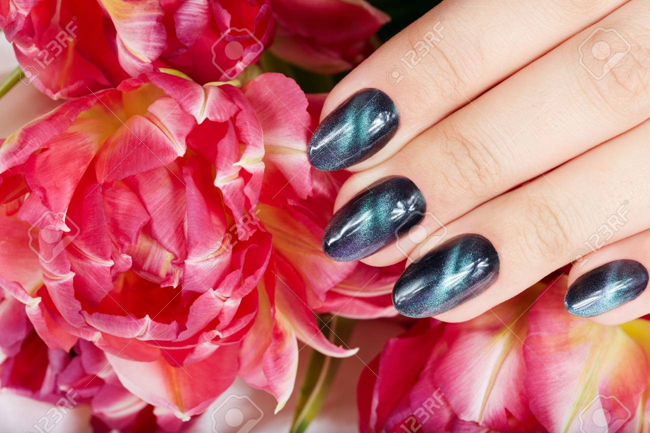 Hand With Manicured Nails With Cat Eye Design And Pink Tulip.. Stock ...