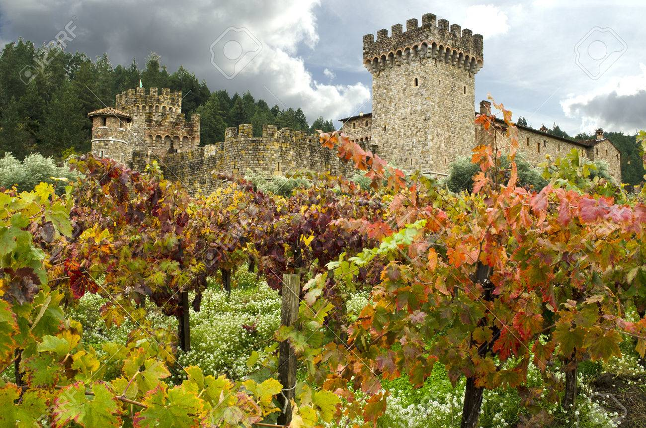 Napa Valley Castle Winery Vineyards Clouds Sky Stock Photo