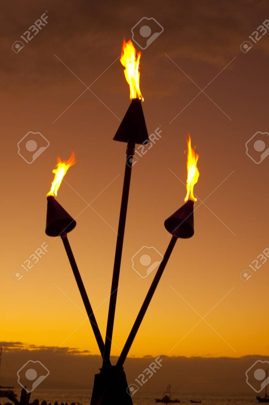 Tiki Torches at Sunset - 9714898