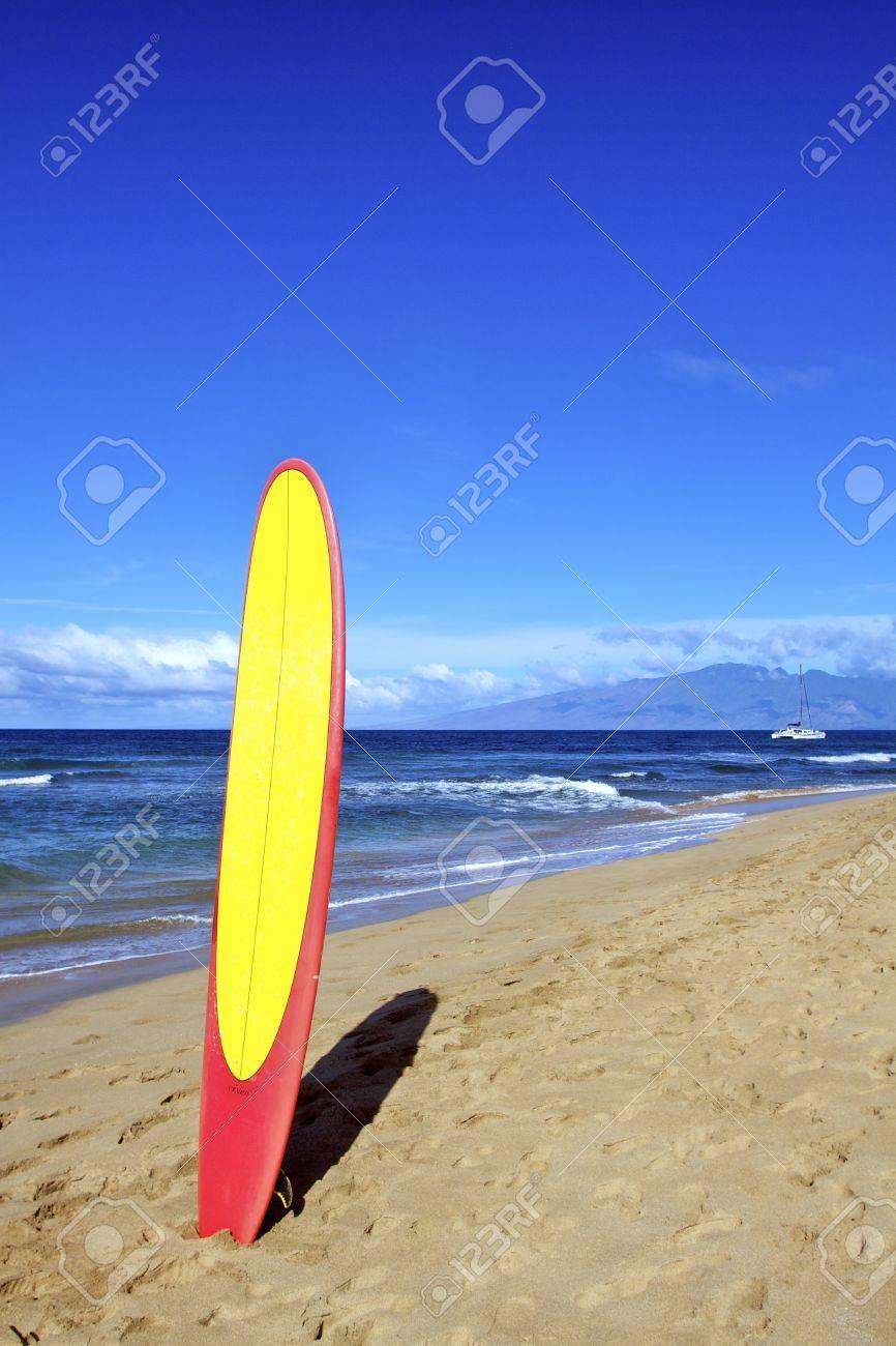 Surfboard on Beach - 12138084