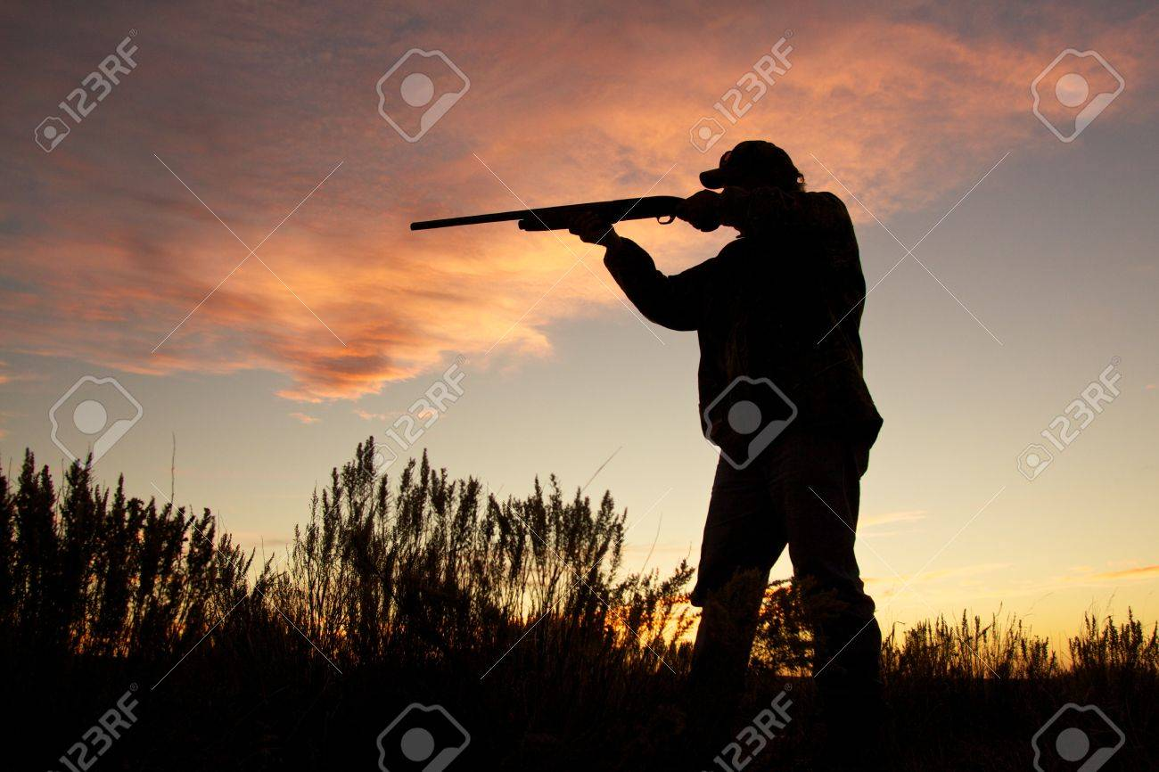 Bird Hunter Silhouetted at Sunrise - 18881375