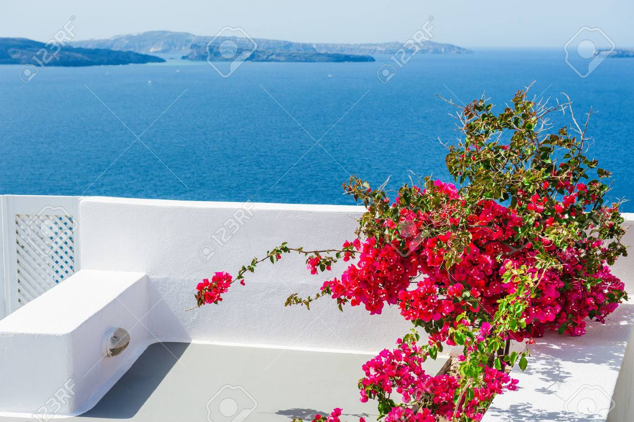 a4a355a00c3b Terrace With Red Flowers. Santorini Island